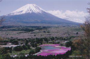 富士山と芝桜/近藤博