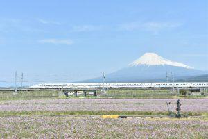 その先の、Japanへ。/村上肇