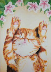 猫/山崎伽羅