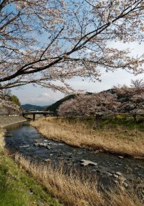 日本の原風景/鳥羽明