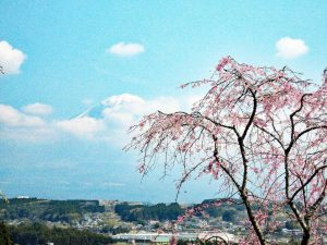 郷の春景色/望月英樹